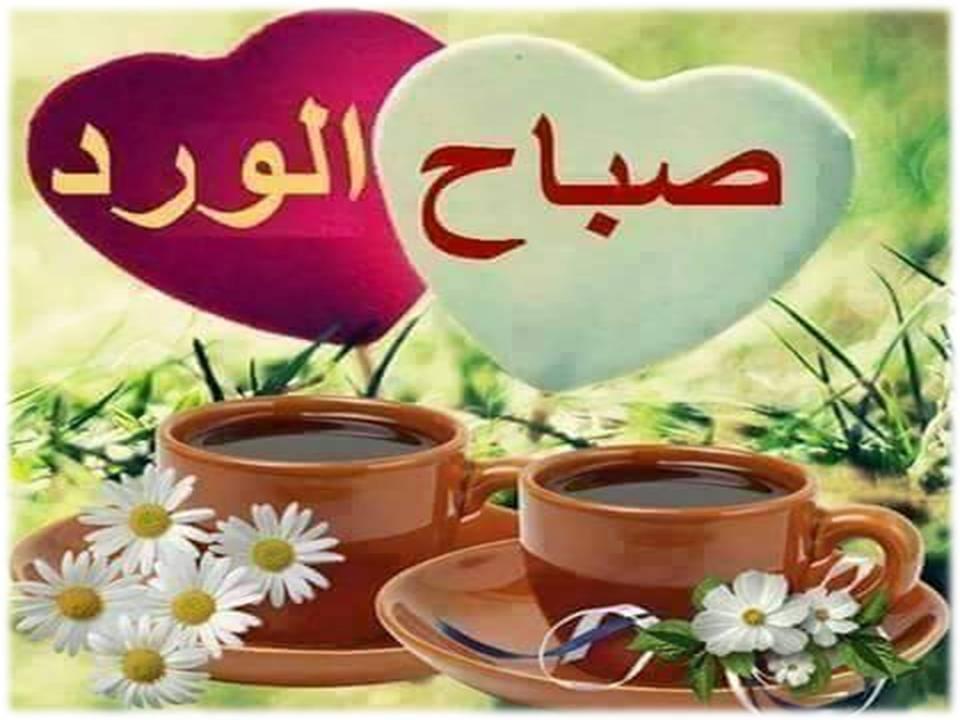 بالصور صباح الفل , اجمل صباح الفل والياسمين العطر 5267 3