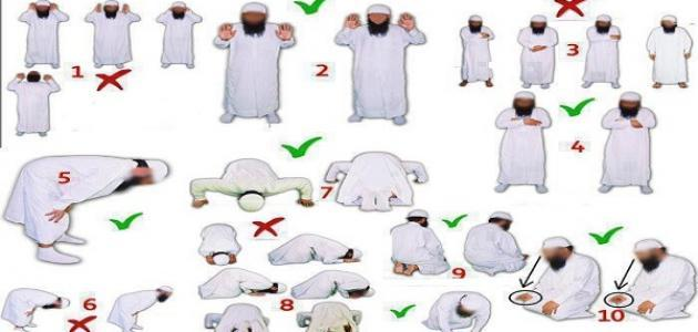 بالصور طريقة الصلاة الصحيحة , كيفيه الصلاه الصحيحه 5503 1