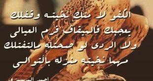 صوره قصيدة مدح في رجل شهم , ابيات شعرية للشباب