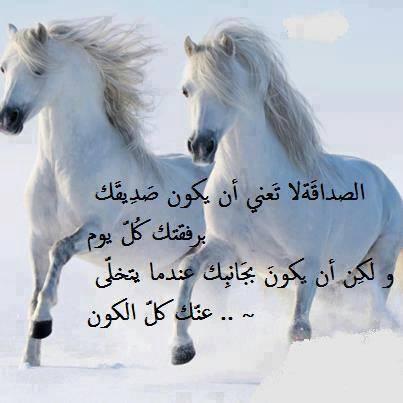 بالصور كلام عن الاصدقاء , كلمات معبرة عن الاصحاب 5810 6