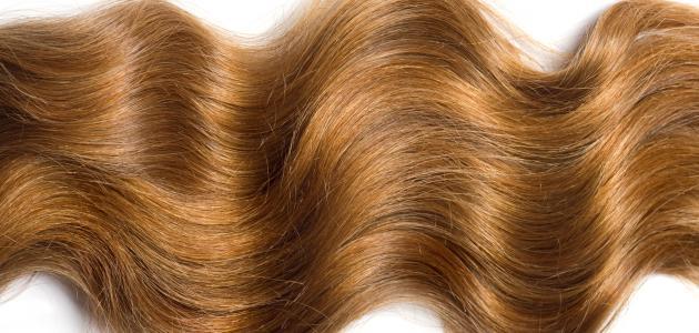 صور طرق تطويل الشعر , خلطات لشعر صحي