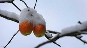 بالصور كم باقي على الشتاء , الشتاء فصل من فصول السنة 2224 3
