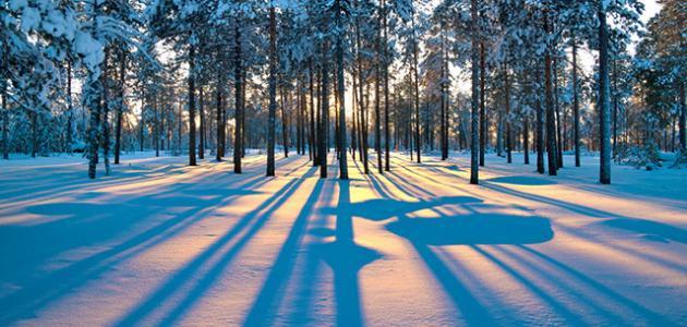 بالصور كم باقي على الشتاء , الشتاء فصل من فصول السنة 2224 8