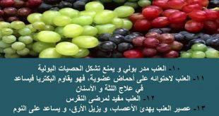 فوائد العنب , العنب الاحمر والاخضر والاسود