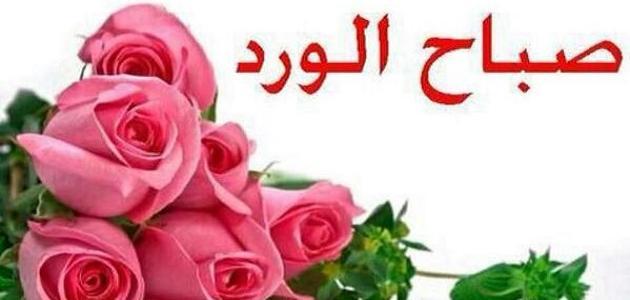 بالصور كلمات صباح الخير للحبيب , صبحك الله يا حياتي بالخير 2270 2