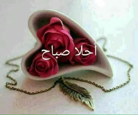 بالصور كلمات صباح الخير للحبيب , صبحك الله يا حياتي بالخير 2270 5