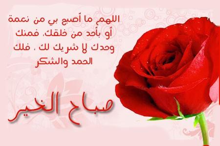 بالصور كلمات صباح الخير للحبيب , صبحك الله يا حياتي بالخير 2270 8