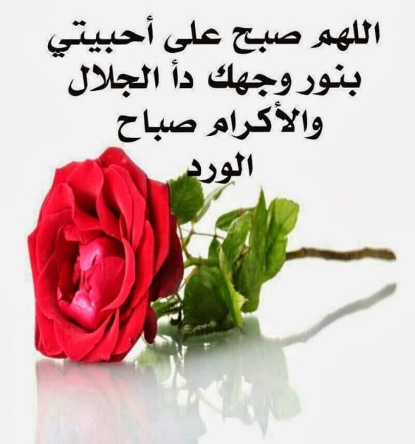 بالصور صور صباح الخير رومانسيه , اروع صور رومانسيه لصباح الخير 4914 1