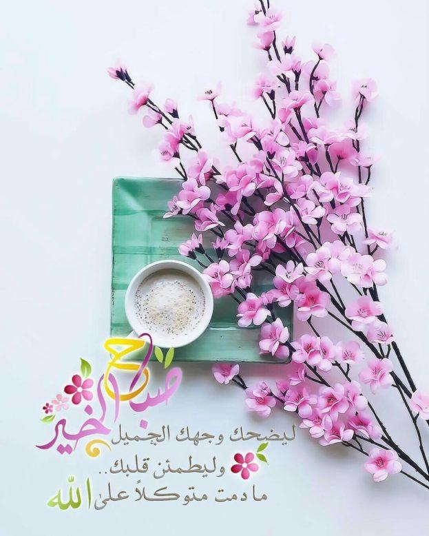 بالصور اجمل صور الصباح , ارقى صور الصباح 5343 10