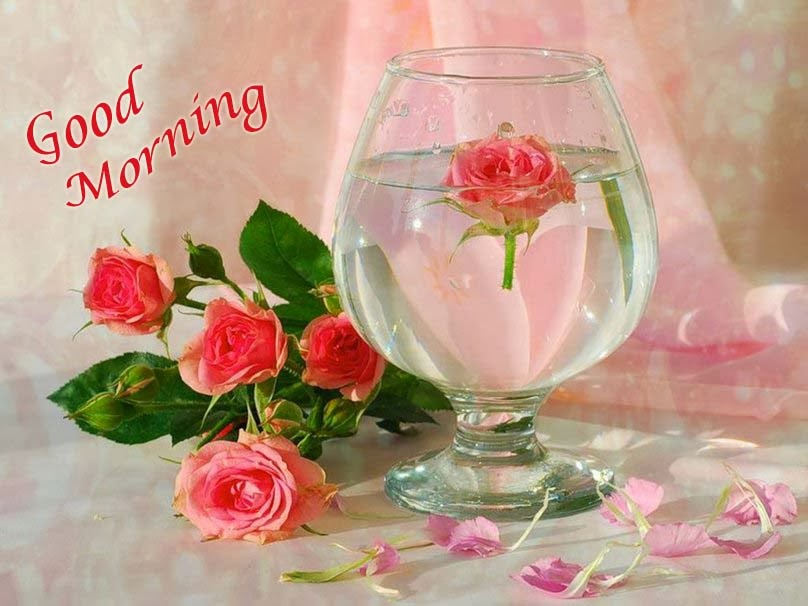 بالصور اجمل صور الصباح , ارقى صور الصباح 5343 3