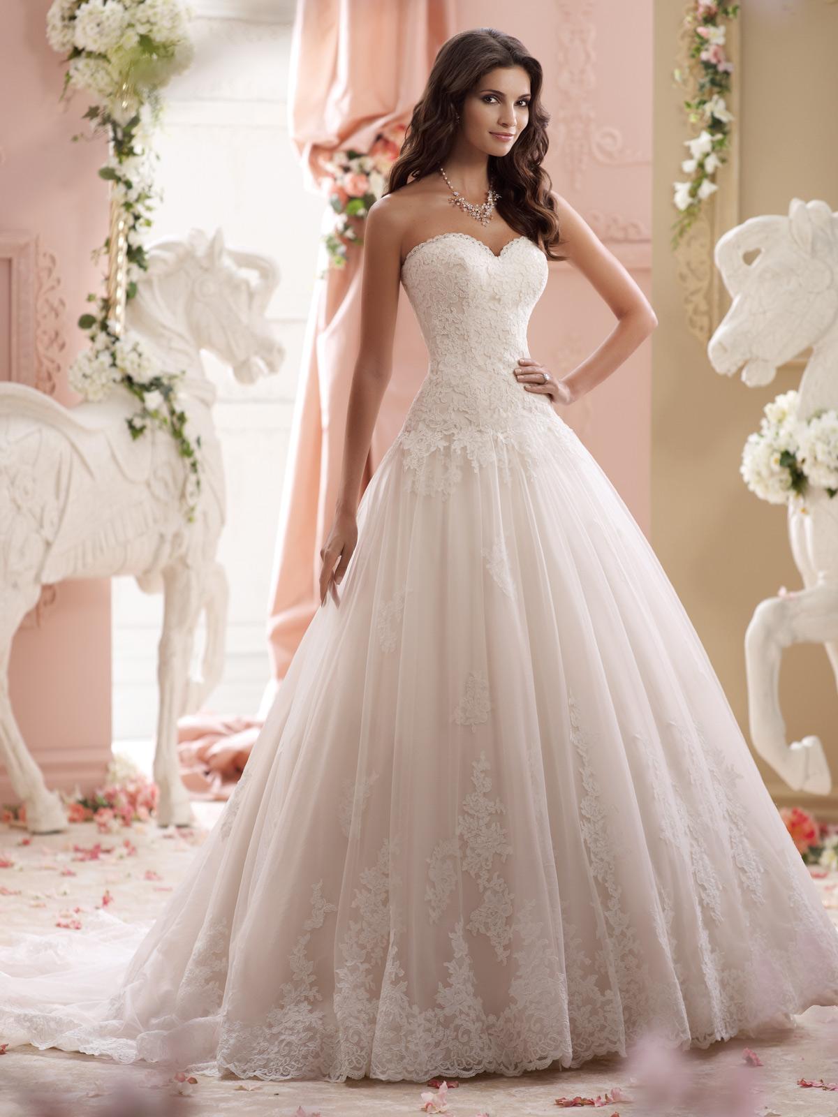 بالصور صور فساتين عروس , احلى صور فساتين عروس 5452 3