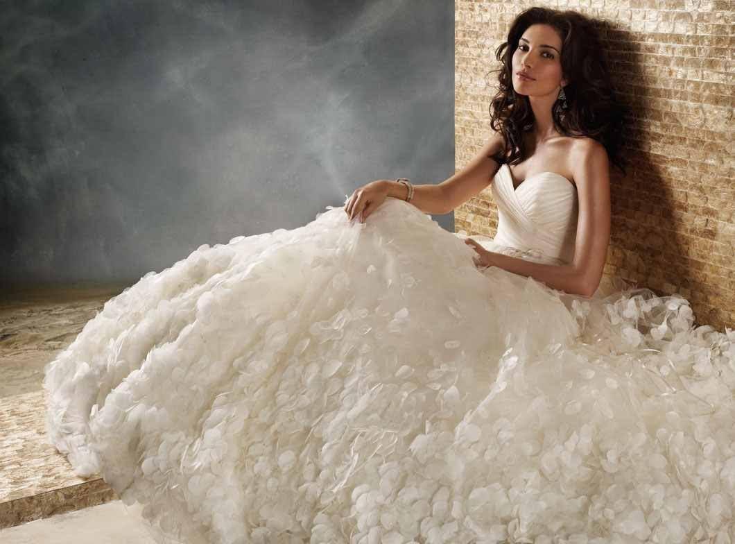 بالصور صور فساتين عروس , احلى صور فساتين عروس 5452 7