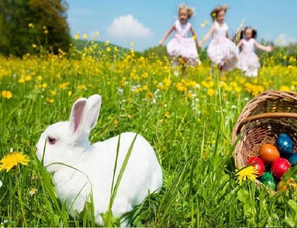 بالصور شعر عن الربيع , ابيات شعرية عن فصول السنه 5773 6