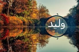 صورة معنى اسم وليد , صفات اسم وليد
