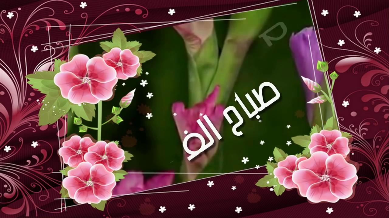 بالصور صباح الورد والفل , صباح الجمال والورد والفل وكل حلو علي الجميع 2318 11