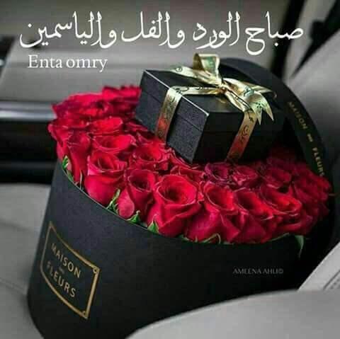بالصور صباح الورد والفل , صباح الجمال والورد والفل وكل حلو علي الجميع 2318 2