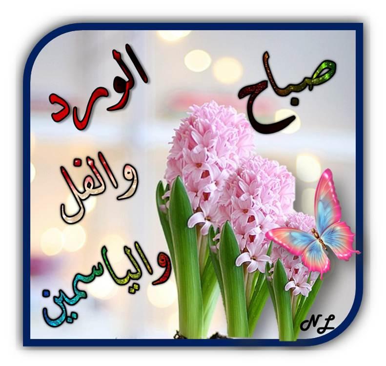 بالصور صباح الورد والفل , صباح الجمال والورد والفل وكل حلو علي الجميع 2318 9