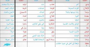 صوره معاني الكلمات عربي عربي , اللغة العربية لغتنا الجميلة