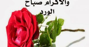 صورصباح الخير رومانسيه , صور جميله ورائعه عن الرومانسيه