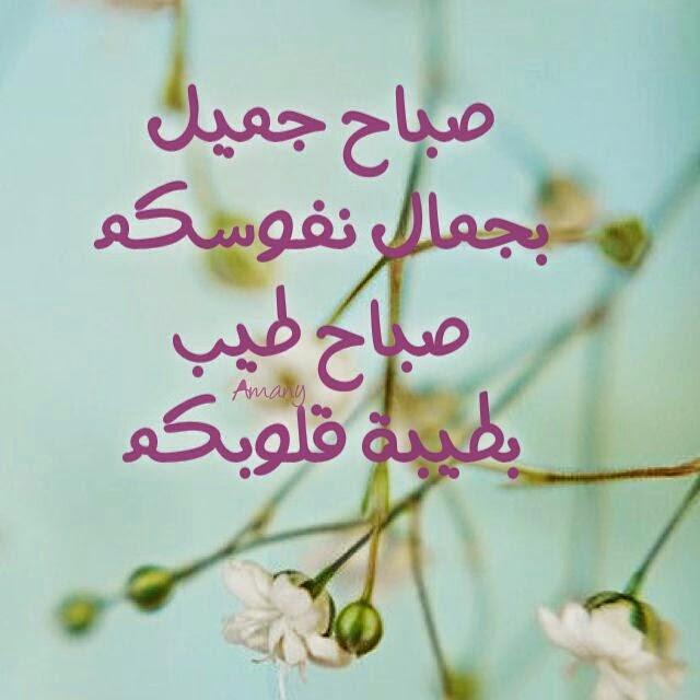 بالصور كلام صباح الخير للجميع , صور صباح الخير روعه 3960 2