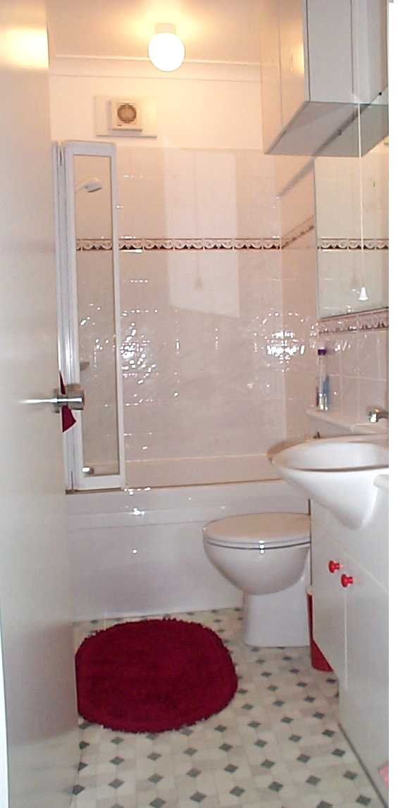 بالصور ديكورات حمامات صغيرة جدا وبسيطة , افكار لتنظيم الحمامات الصغيره 4364 11