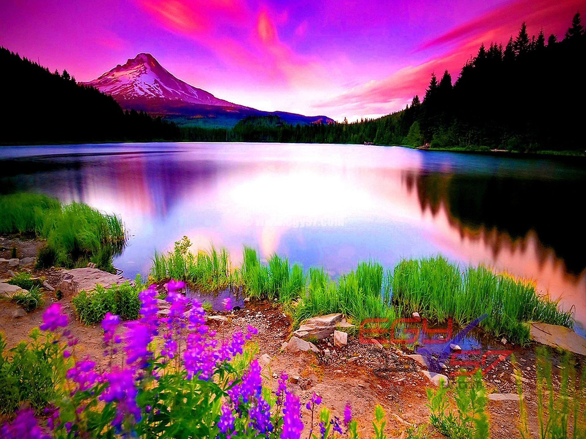 بالصور صور عن الطبيعة , مناظر طبيعيه خلابه 4410 36