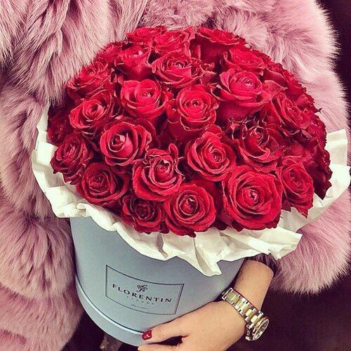 بالصور صور ورود طبيعيه , جمال الورد الطبيعى 4506 4