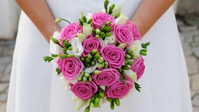 بالصور صور ورود طبيعيه , جمال الورد الطبيعى 4506 6