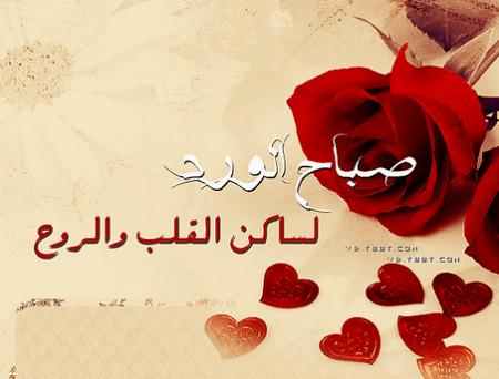 بالصور صباح الحب حبيبتي , صباح الرومانسية الرائعة 4517 3