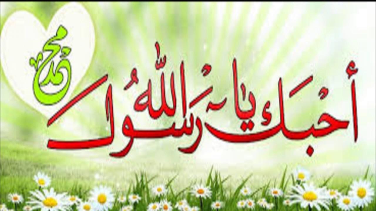 صوره صور عن المولد النبوي الشريف , يوم مولد اشرف الخلق