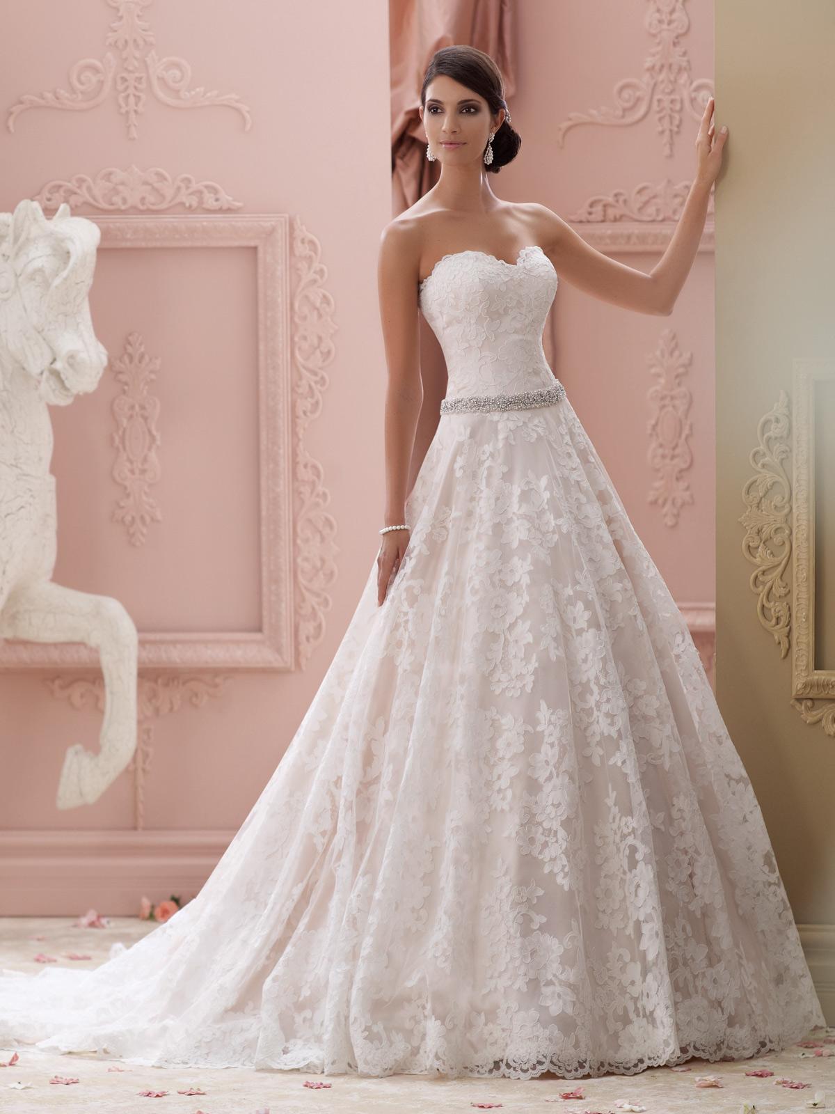بالصور صور فساتين عرايس , فساتين زفاف راقيه 4623 8
