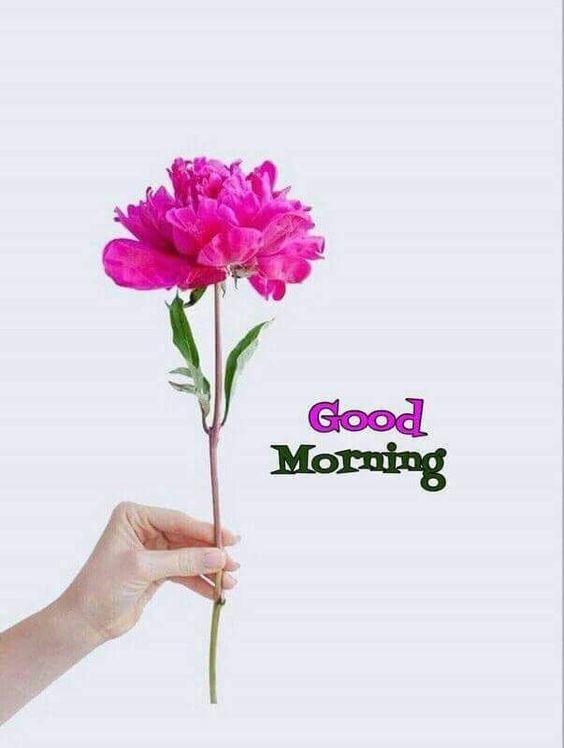 صور رمزيات صباح الخير , اروع صور صباح الخير