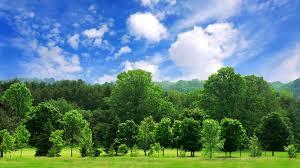 صور صور عن البيئة , اجمل الصور عن البيئة