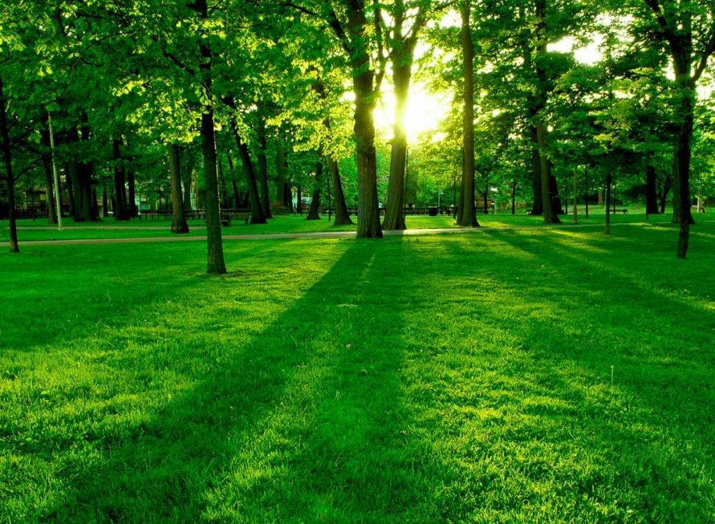 صورة صور عن البيئة , اجمل الصور عن البيئة