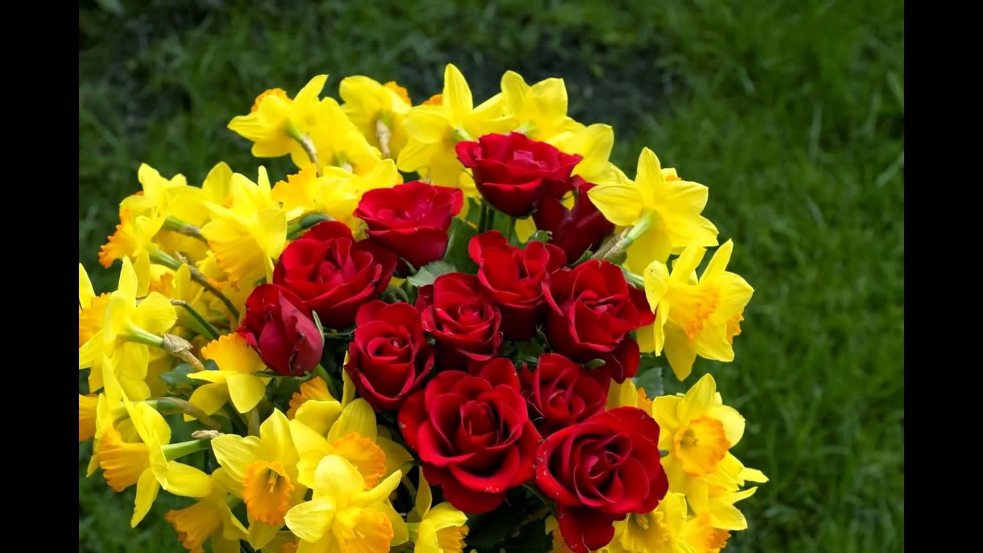 بالصور صور ورد طبيعي , اروع الزهور الطبيعية 5156 8