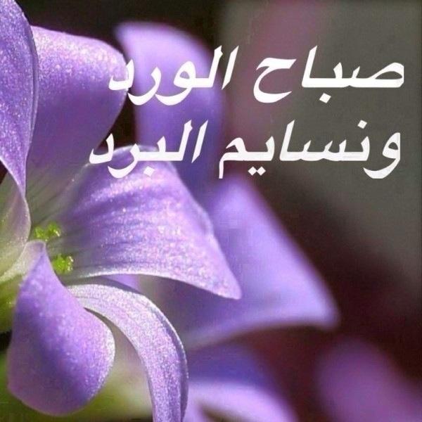 صورة كلمات صباحية للاصدقاء , اجمل كلمات صباحيه للاصدقاء 5445