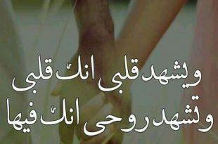 صورة اجمل العبارات في الحب , اروع كلمات الحب المؤثره