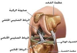 صورة عملية الرباط الصليبي , اعراض قطع الرباط الصليبي