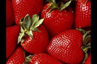 صوره فوائد الفراولة , منافع فاكهة الفراولة