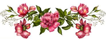 بالصور خلفيات زهور , املئي هاتفك ببعض الزهور 1985 10