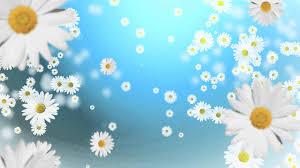 بالصور خلفيات زهور , املئي هاتفك ببعض الزهور 1985 3