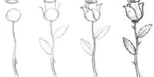صوره رسومات سهلة وجميلة , تعلم الرسم متعه جديده