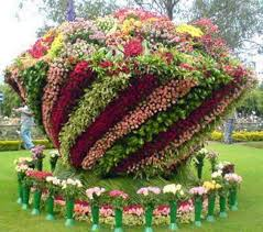 بالصور بوكيه ورد كبير , رمز الدفء والحب 2012 2