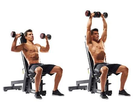 صورة تمارين الكتف , تدريبات عضلات الكتف 236 2