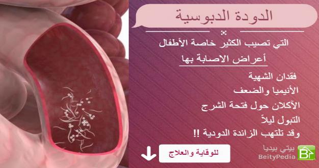 صورة علاج الديدان , مواجهة ديدان البطن