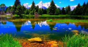 صوره خلفيات الطبيعة , صور خلفيات جميله للطبيعه