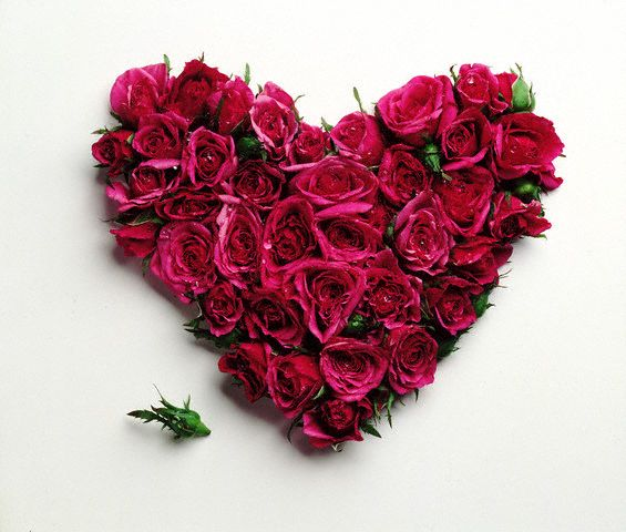 بالصور كلام من القلب للقلب , اجمل كلام يصل الي القلب 3079 9