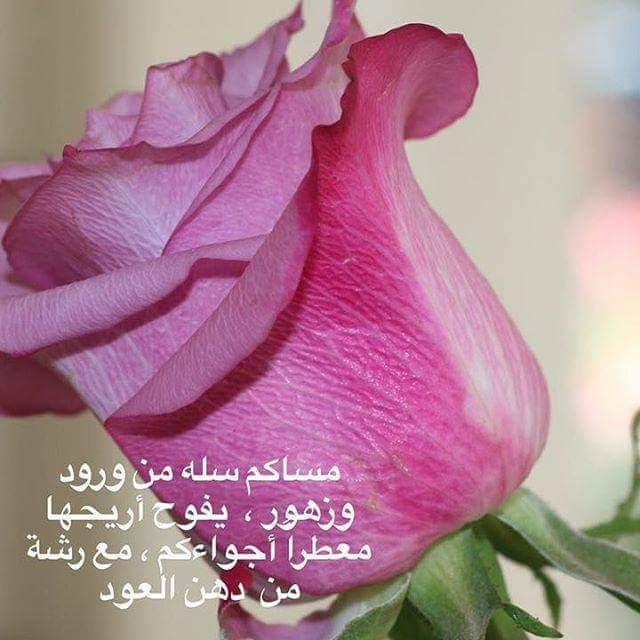 مساء الخير دعاءمساء الخير 9