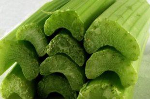 صوره فوائد الكرفس , استخدامات نبات الكرفس