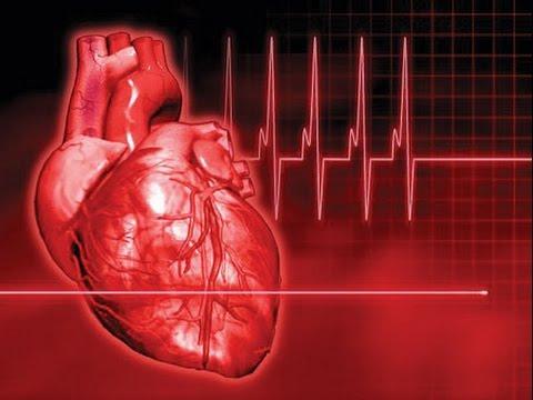 صورة تسارع نبضات القلب , اسباب سرعة ضربات القلب